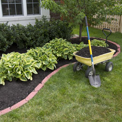 Lawn and Garden Ideas and Projects