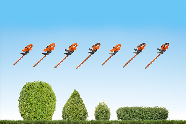 Cordless and corded hedge trimmers on display in a yard