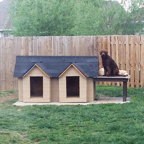 dog house diy