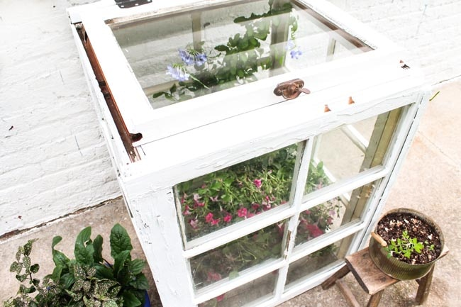 DIY Mini Backyard Greenhouse_10