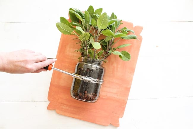 DIY Indoor Herb Garden_12